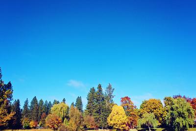 Fall Magic.....