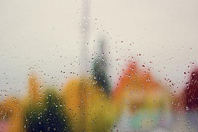 Rainy Fall Day....