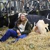 HolsteinVision17-0215
