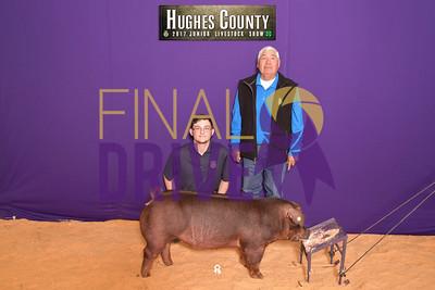 DO17-Hughes-3331