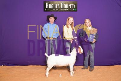 DO17-Hughes-3343