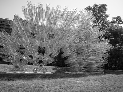 Forever Bicycles - Ai Wei Wei