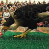 MET012617 duke eagle caracara