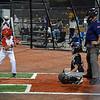 Alex's Baseball 2017 01