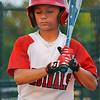 Alex's Baseball 2017 04