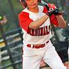 Alex's Baseball 2017 03