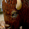 MET 062317 GRIFFIN BISON HEAD