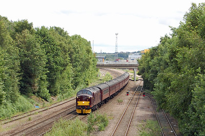 The following afternoon, 37706 enters the increasingly overgrown cutting at Stourton with the 5Z71 1133 return ECS move from Scarborough to Carnforth off the previous day's charter to London  (25/06/2017)