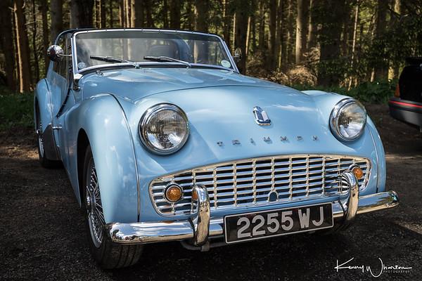 2255 WJ Triumph TR3