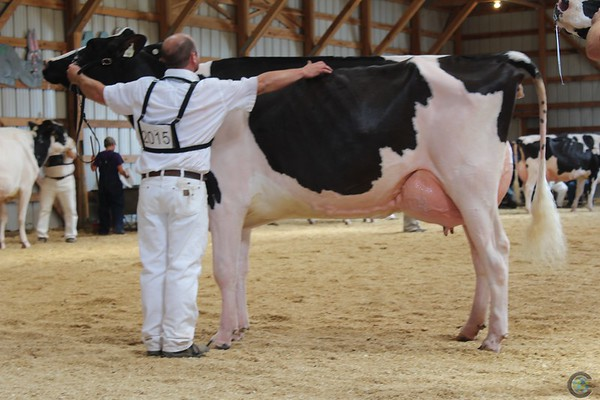 MN_State_HOL_Show17_IMG_0039