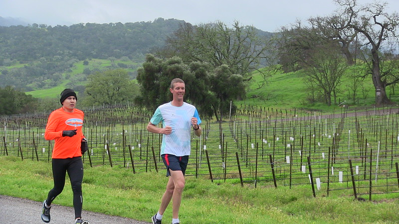 Mike and Bud vineyard running