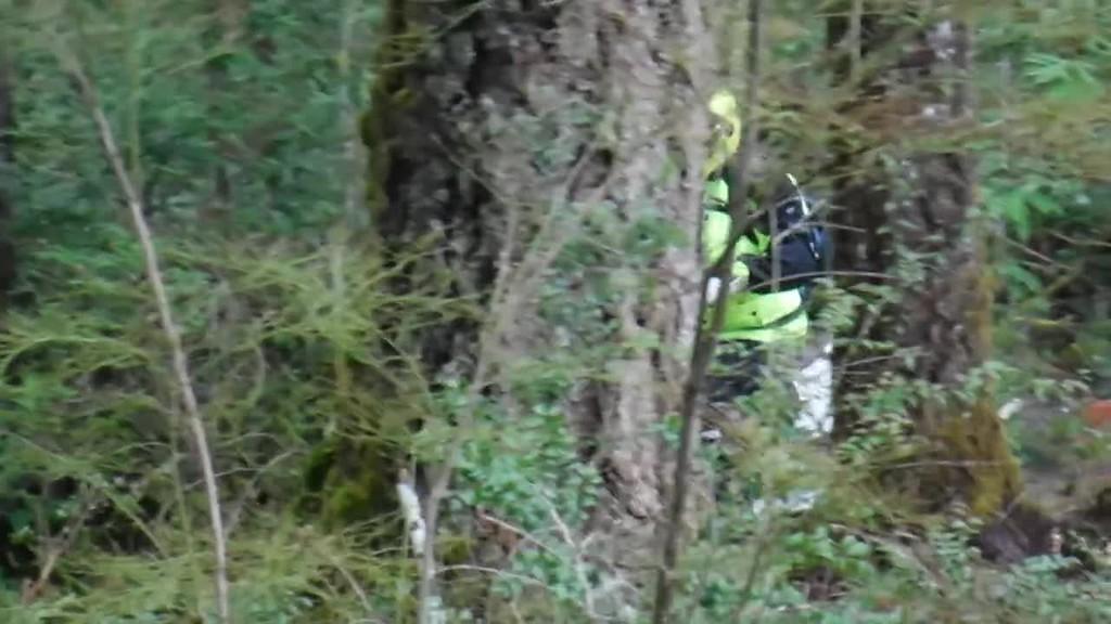 Video of Log Bypass