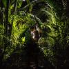 Love, Jungle Love