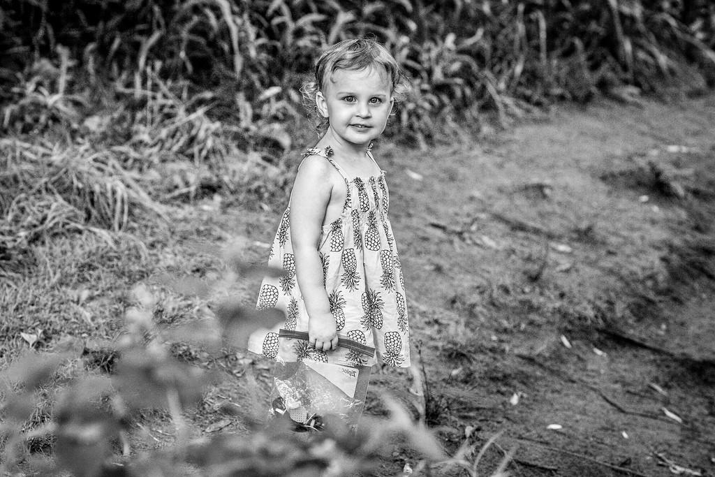 Joe Schmitt Photography
