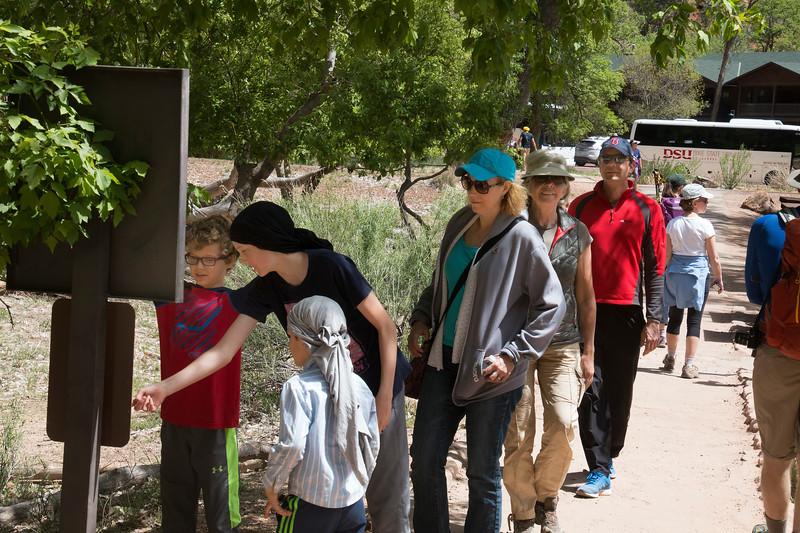 Zion National Park, 1 Zion Park Blvd, Springdale, UT 84767