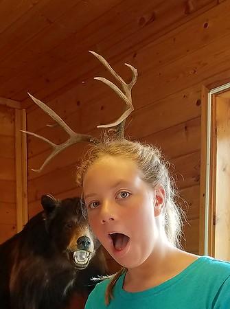 Montana August 2017