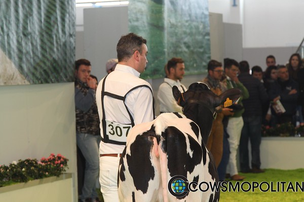 Montichiari_17_HO_IMG_8574