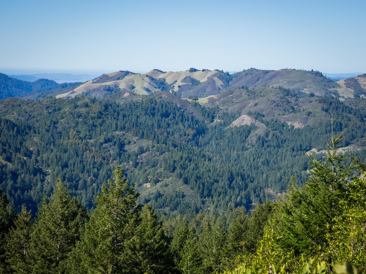Azalea Hill and north