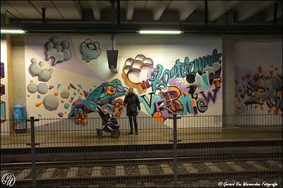 20170217 station Stadhuis DSC_0642