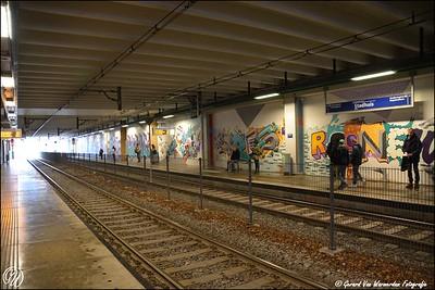 20170217 station Stadhuis DSC_0626