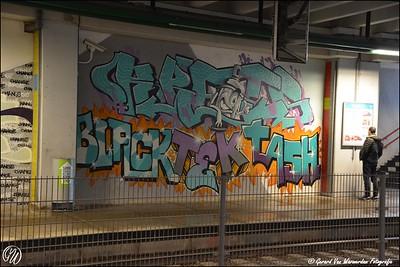 20170217 station Stadhuis DSC_0621