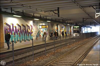 20170217 station Stadhuis DSC_0630