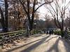 Central Park, bridge