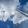 Cumulus Reflections