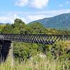 One lane bridge over the Buller River
