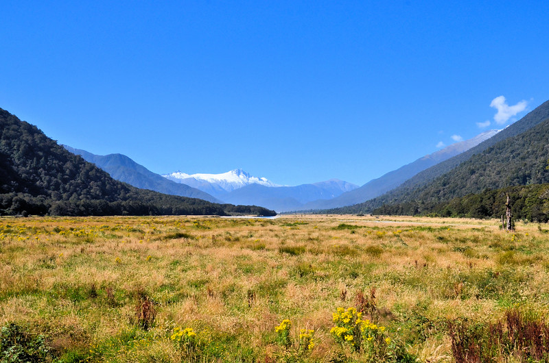 Mount Cook view from the Haast Highway