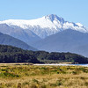 Along the Haast Highway
