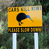 Warning sign in a kiwi area