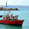 Napier fishing dock