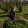 MET 111917 TREES BRENTLINGER