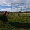 MET 111917 TREES 01DAHNKE