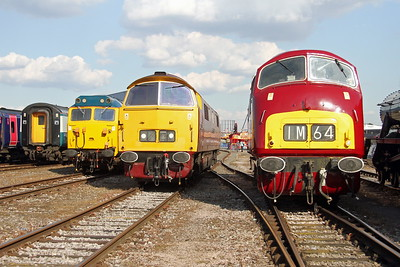 D1015 Old Oak Common 02/09/17 with 50035 (l) and D821 (r)