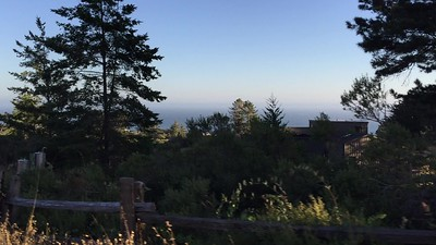 Sea Ranch Area and Nearby Homes