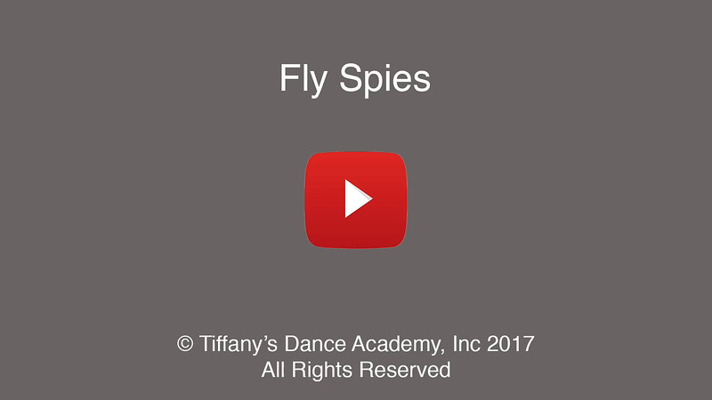 Fly Spies (Spiderman)