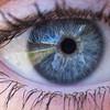 Depth 4: Eye Spy