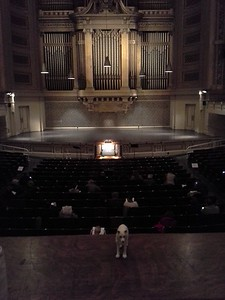 great-organ-music-at-yale-(2)