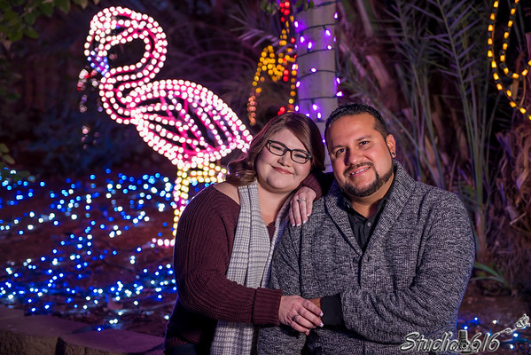 2017-12-12 Wendy-Freddy - © Studio 616 Photography-9
