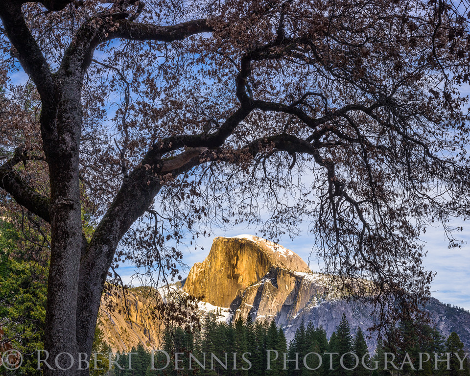 Half Dome, Yosemite Valley
