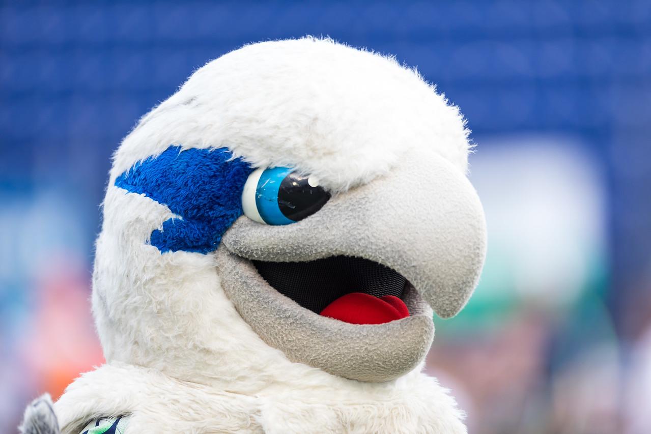 MLL: Rochester Rattlers @ Chesapeake Bayhawks