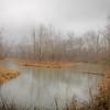 Rockport Road Pond-msytified