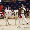 Classic2017_RedHolstein-1484