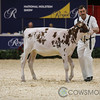 Classic2017_RedHolstein-1487