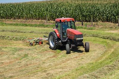 Farmer -raking-07165