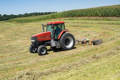 Farmer -raking-07166