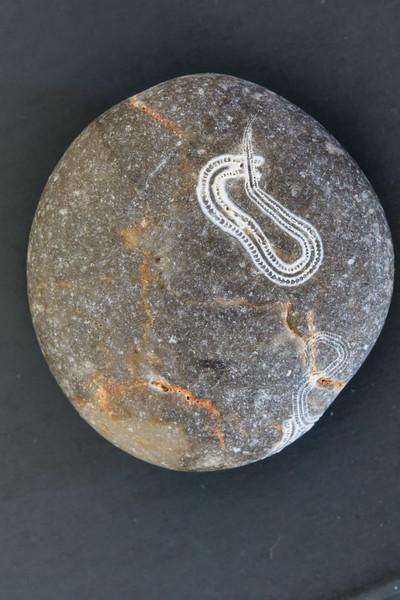 Pebble stone with fossils, Vananda beach, Karpathos, Sep-2017