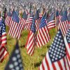 MET 091017 Flags